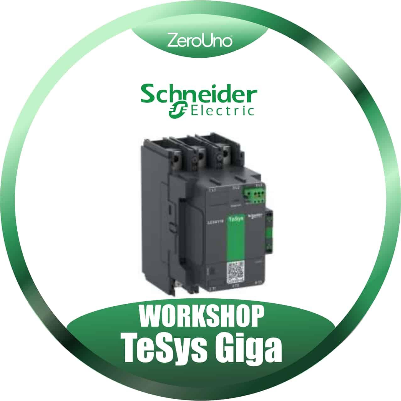 Schneider Workshop TeSys Giga   Elettrogruppo ZeroUno    Torino    Italia  disco anteprima news tesys giga